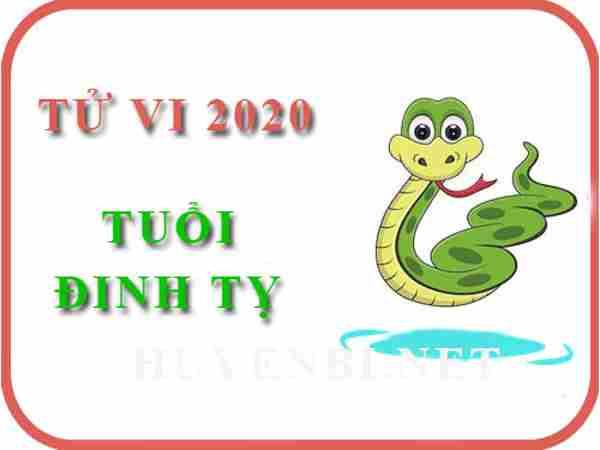 Xem tử vi tuổi Đinh Tỵ năm 2020