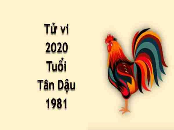 Xem tử vi tuổi Tân Dậu năm 2020