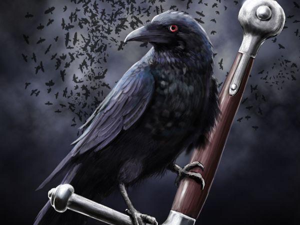 Mơ thấy quạ là điềm gì, thử vận may với con đề nào?