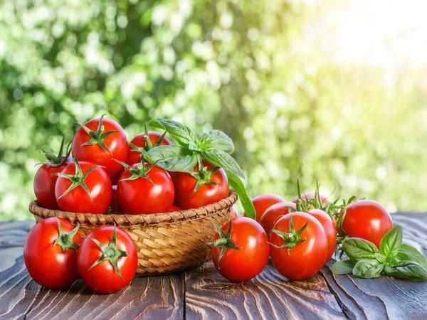 Mơ thấy quả cà chua điềm báo lành hay dữ?